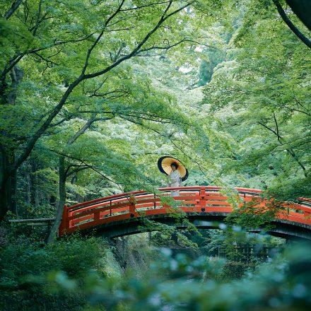 京都きもの巡り サイト公開のお知らせ