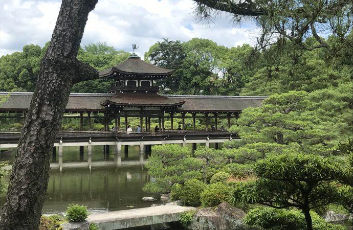 京都平安神宮の菖蒲会のお茶会に参加しました